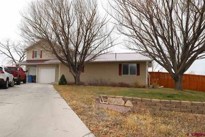 Montrose Single Family Home For Sale: 66798 La Plaza Court
