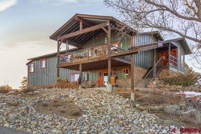 Durango Single Family Home For Sale: 254 Cr 224
