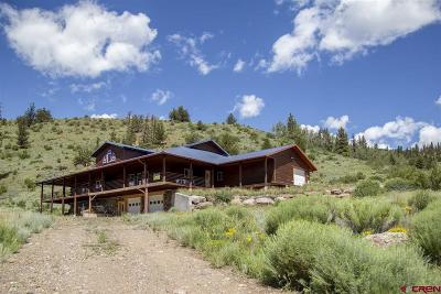 Creede Single Family Home For Sale: 27976 Hwy 149 Highway