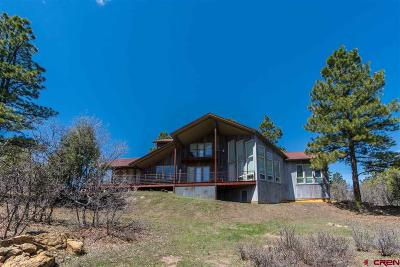 Pagosa Springs Single Family Home For Sale: 52 Yarrow Circle