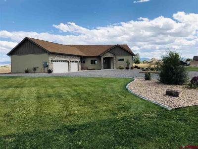 Montrose Single Family Home For Sale: 60093 Kiowa Lane