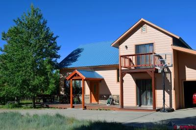 Mancos Single Family Home For Sale: 42073 N.25 Road