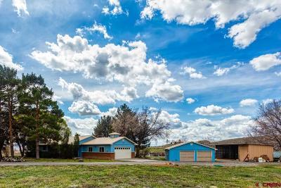 Austin Single Family Home For Sale: 20936 Vista Grande
