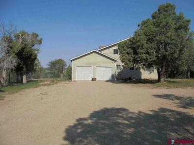 Mancos Single Family Home For Sale: 10850 Road 41.2