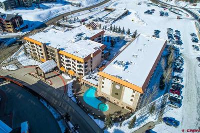 Mt. Crested Butte Condo/Townhouse For Sale: 6 Emmons Road #519