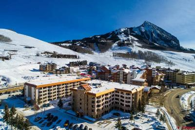 Mt. Crested Butte Condo/Townhouse For Sale: 6 Emmons Road #107