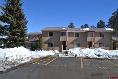 Pagosa Springs Condo/Townhouse For Sale: 145 Davis Cup Drive #4046