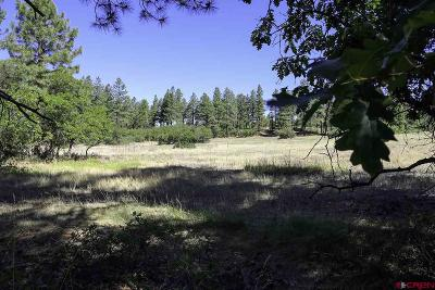 Durango Residential Lots & Land UC/Contingent/Call LB: 6828 Cr 228