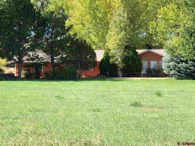Olathe Single Family Home For Sale: 5611 5600 Road