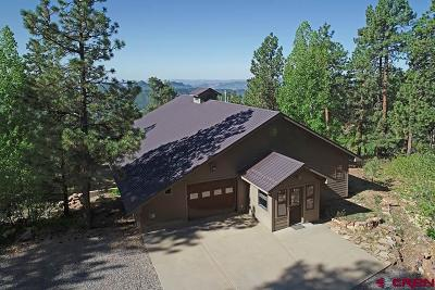 Durango Single Family Home For Sale: 767 Durango Road