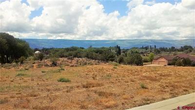 Cedaredge Residential Lots & Land For Sale: 720 SE Pine Street