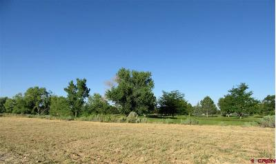 Cortez Residential Lots & Land For Sale: 2415 Golf Course Lane Lot #10