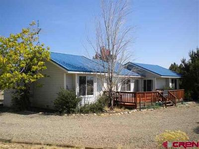 Dolores Single Family Home For Sale: 25395 V.6