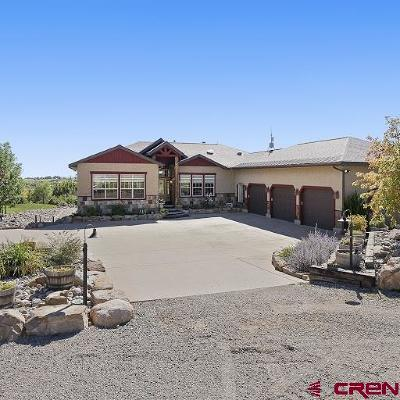 La Plata County Single Family Home For Sale: 203 Emerald Heights Lane