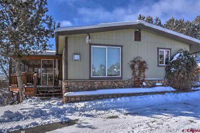 Durango Single Family Home UC/Contingent/Call LB: 10687 Cr 213