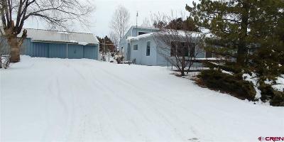 Single Family Home For Sale: 914 Guyrene