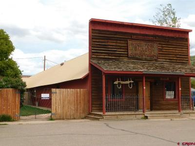 Commercial For Sale: 105 S 5th Street