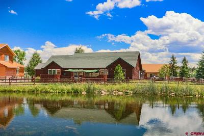 Pagosa Springs Single Family Home For Sale: 411 Blue Heron Circle