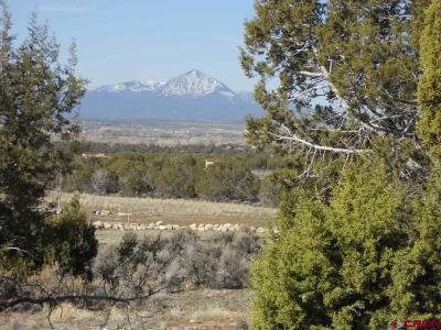 Mancos Residential Lots & Land For Sale: 13300 Road 30.5