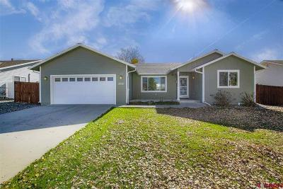 Montrose Single Family Home UC/Contingent/Call LB: 2645 Iris Court