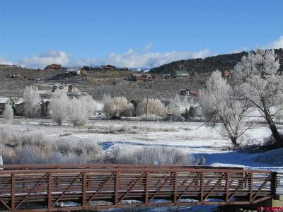 Ridgway CO Residential Lots & Land For Sale: $895,000