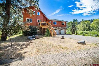 Pagosa Springs Single Family Home For Sale: 12 Bridge Drive