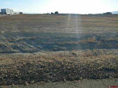 Delta Residential Lots & Land For Sale: 3 Ruth Lane