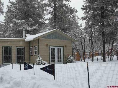 Pagosa Springs Single Family Home For Sale: 442 Steep Place