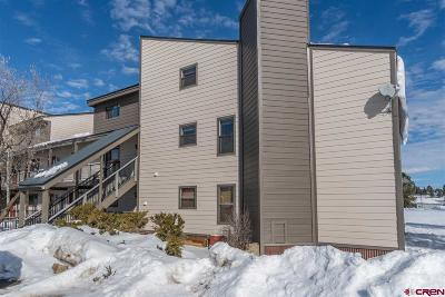 Pagosa Springs Condo/Townhouse For Sale: 164 Valley View Drive #3210
