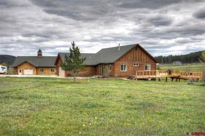 La Plata County Single Family Home NEW: 2801 County Road 502