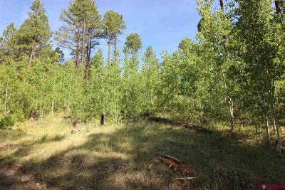 Durango CO Residential Lots & Land For Sale: $36,000