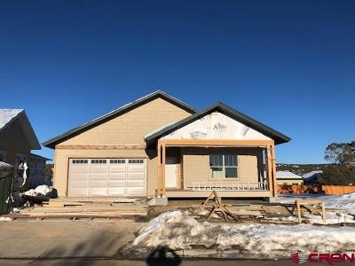 La Plata County Single Family Home UC/Contingent/Call LB: 169 Salt Brush Avenue