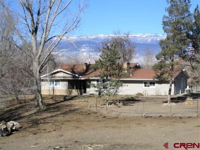 Delta Single Family Home UC/Contingent/Call LB: 18517 G Road