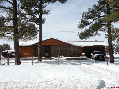 Pagosa Springs Single Family Home NEW: 3175 Us Hwy 84