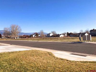 Single Family Home For Sale: 3168 Saddle Gulch Drive