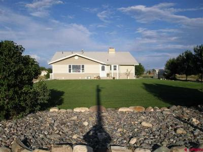 Montrose County Single Family Home NEW: 9456 6075 Road