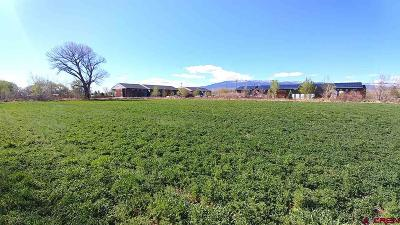 Delta Residential Lots & Land For Sale: 699 Highway 50