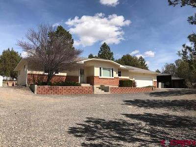 Cedaredge Single Family Home For Sale: 16874 Bull Mesa Road