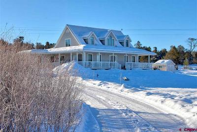 La Plata County Single Family Home UC/Contingent/Call LB: 552 Ranchos Florida Drive