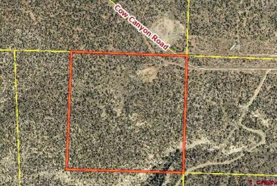 Durango CO Residential Lots & Land NEW: $94,825