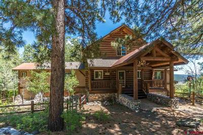 Pagosa Springs CO Farm For Sale: $979,000
