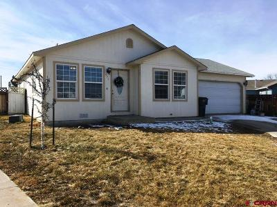 Delta CO Single Family Home For Sale: $199,900
