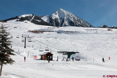 Mt. Crested Butte CO Residential Lots & Land NEW: $2,500,000