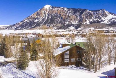 Gunnison County Single Family Home For Sale: 40 Slate View Lane