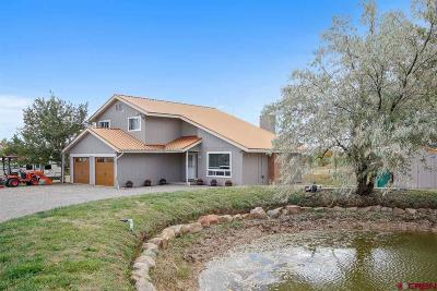 La Plata County Single Family Home UC/Contingent/Call LB: 16 Clover Place