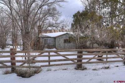 La Plata County Single Family Home For Sale: 540 Cr 103