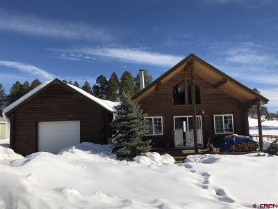 Pagosa Springs Single Family Home UC/Contingent/Call LB: 293 Hills Cir