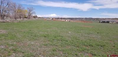 Cortez Residential Lots & Land UC/Contingent/Call LB: Road N.8 Loop