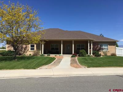 Delta CO Single Family Home UC/Contingent/Call LB: $425,000