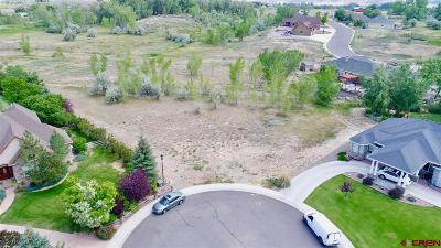 Montrose Residential Lots & Land For Sale: 4225 Waterfall Drive